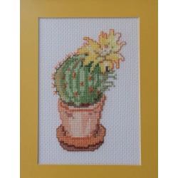 Cacto flor amarela sem moldura